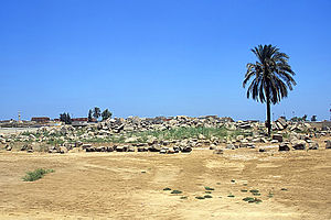Behbeit El Hagar - View of the temple site