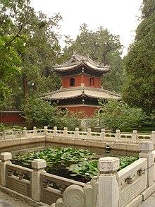 BeijingBotanical2.jpg