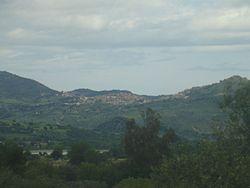 Belvedere Spinello1.jpg