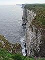 Bempton Cliffs - geograph.org.uk - 768892.jpg