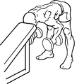 Bent-over-rear-delt-row-with-head-on-bench-2.png