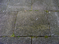 Beton-stoeptegel30x30.png