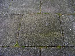 Terrastegels Beton 50x50.Stoeptegel Wikipedia