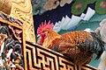 Bhutan A Story of Redemption.jpg
