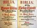 Bible (Serbski).jpg