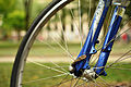 Bicycle wheel (close-up).JPG