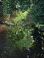 Bide Brook, Lacock - geograph.org.uk - 1334054.jpg