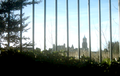 Birkenhead Through Bars.png