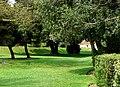 Bishop's Palace Garden - geograph.org.uk - 1288180.jpg