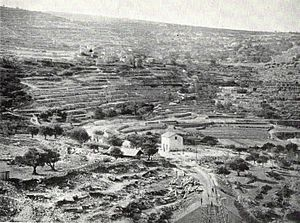 Battir - Battir's ancient terraces, 1893