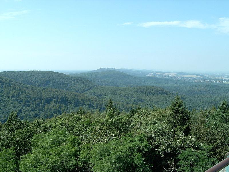 Archivo:Blick-über-den-Teutoburger-Wald1.JPG