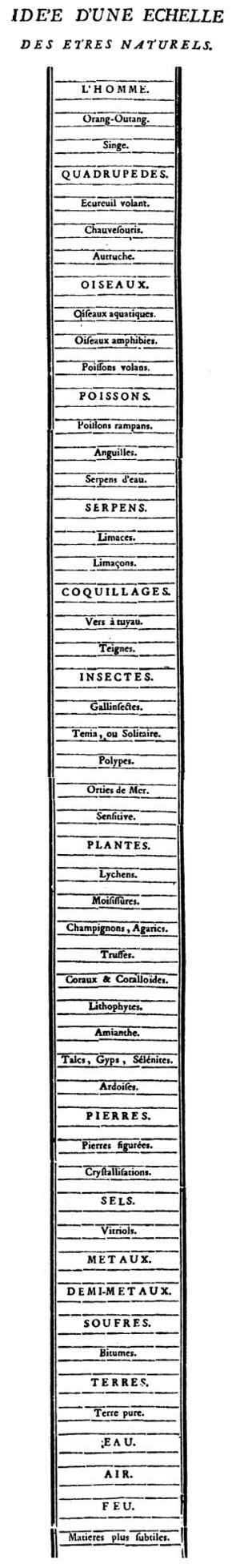 Charles Bonnet - Chain of being from Traité d'insectologie, 1745