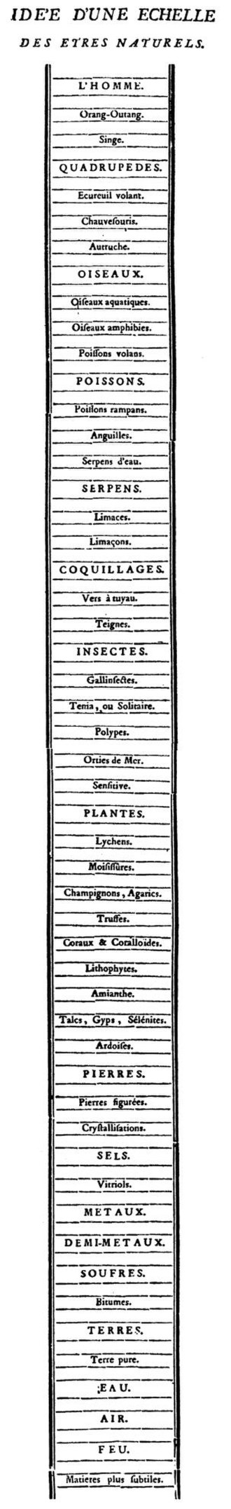 Great chain of being - Charles Bonnet's chain of being from Traité d'insectologie, 1745