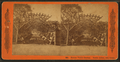 Boston Public Garden, rustic arbor, two views, by Woodward, C. W. (Charles Warren).png