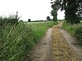 Boudica's Way - to Stratton St Michael - geograph.org.uk - 1362302.jpg