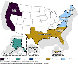 U.S. Regional Fishery Management Councils