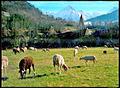 Bourips-village (1).jpg