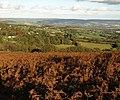 Bracken moorland above Haytor Vale - geograph.org.uk - 1015556.jpg