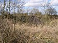 Bridge over Dismantled Railway - geograph.org.uk - 705401.jpg