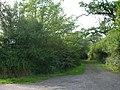 Bridle path leading to Halghton Lane - geograph.org.uk - 227504.jpg