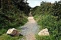 Bridleway near Lanner - geograph.org.uk - 532152.jpg