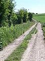 Bridleway near Norrington Manor - geograph.org.uk - 1334583.jpg