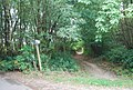 Bridleway off the Tunbridge Wells Circular Path, High Wood - geograph.org.uk - 1490312.jpg