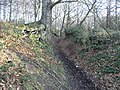 Bridleway through a cutting - geograph.org.uk - 123772.jpg