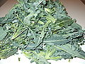 Broccolo fiolaro.jpg