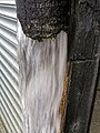 Broken water pipe draining water at Hatfield Broad Oak, Essex, England 02.jpg