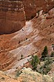 Bryce Canyon from scenic viewpoints (14749302734).jpg