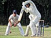 Buckhurst Hill CC v Dodgers CC at Buckhurst Hill, Essex, England 67.jpg