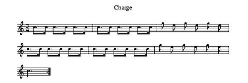 An example of a Charge.