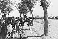 Bundesarchiv R 49 Bild-0131, Aussiedlung von Polen im Wartheland