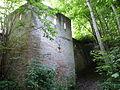 Burg Trausnitz, Burgmauer.JPG
