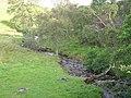 Burn of Glencally - geograph.org.uk - 227695.jpg
