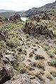 Butcher Jones Trail to Pinter's Point Loop, Tonto National Park, Saguaro Lake, Ft. McDowell, AZ - panoramio (43).jpg