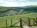 Butser Hill and Hillhampton Bottom - geograph.org.uk - 8088.jpg