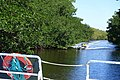 Buttonwood Canal tour - Everglades National Park - DSC09353.jpg