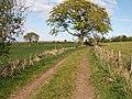By Nydie Mains - geograph.org.uk - 168699.jpg