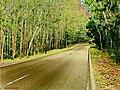 By bloesafir - panoramio - Bloesafir Pamanjagau (1).jpg