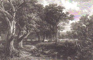 Cadzow Castle - The ancient Cadzow oak forest and Cadzow White Park cattle in the 19th century.