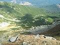 Caldarea de sub Vf. Steflesti - panoramio.jpg