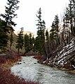 Camas Creek - Ukiah Dale SSC.jpg