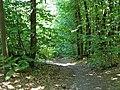 Carrefour de la route du Faîte et des Fossés d'Allu (Forêt de Montmorency) - panoramio - Eric Bajart (1).jpg