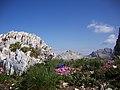 Cartolima dal Latemar - panoramio.jpg