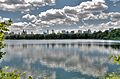 Central Park Reservoir, July 2009, NYC.jpg
