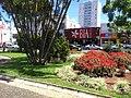 Centro, Franca - São Paulo, Brasil - panoramio (249).jpg