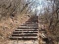 Cerro san bernardo 1.jpg