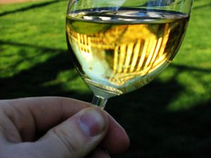 A glass of Chardonnay. Thomas Jefferson's Rotu...